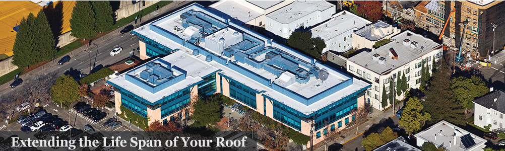 Extending the Life Span of Your Roof